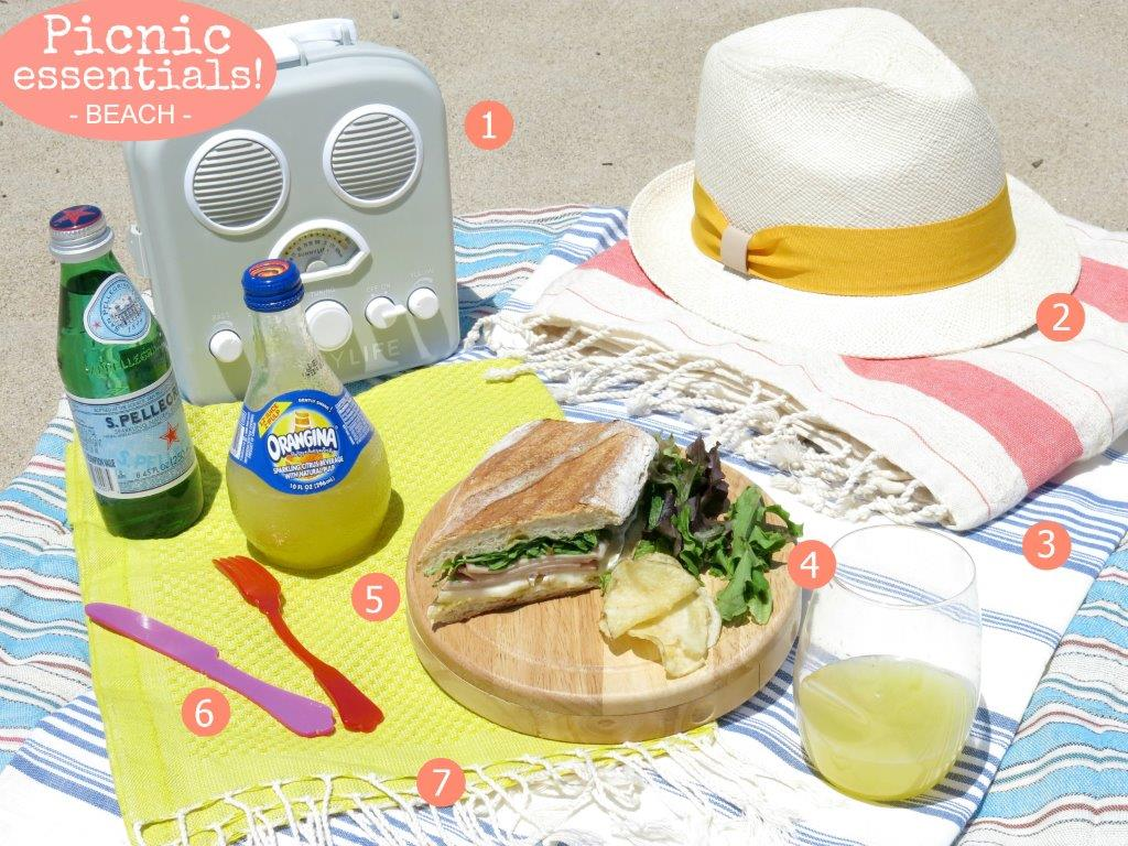 """picnic-beach-essentials-gum-tr</p"